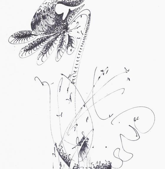 faune et flore aux feutres (33)